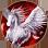 BDO Horse Skill Mighty Leap