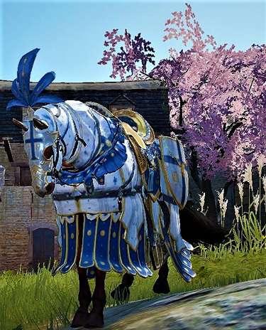 BDO Horse Training Guide Armored Pic