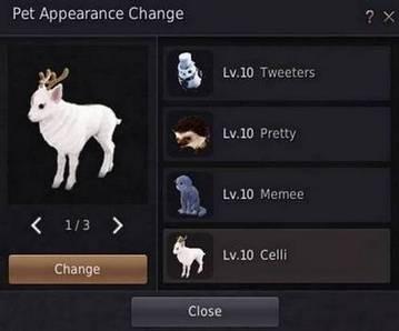 BDO Pet Appearance Change Window