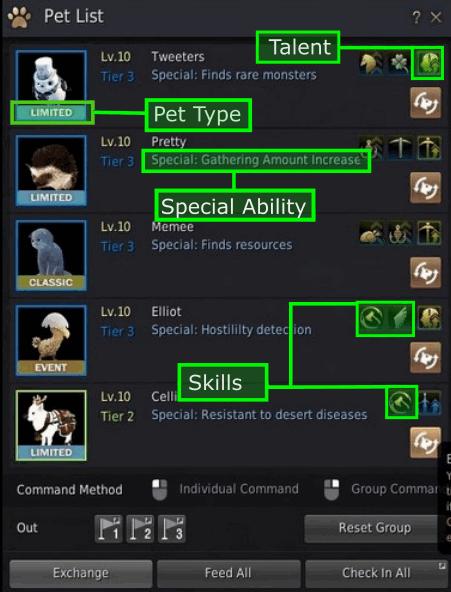 BDO Pet Window: Skills, Talents, and Special