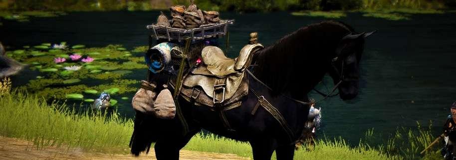 BDO Trading Horse