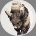 Rock Head Bison