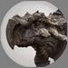 Stone Mountain Turtle Dragon