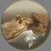 Tigris Island
