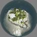 Tulu Island