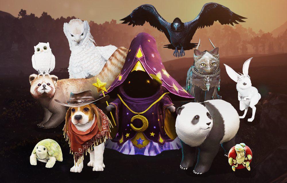 BDO Pets & Pet Food (Black Desert Online)