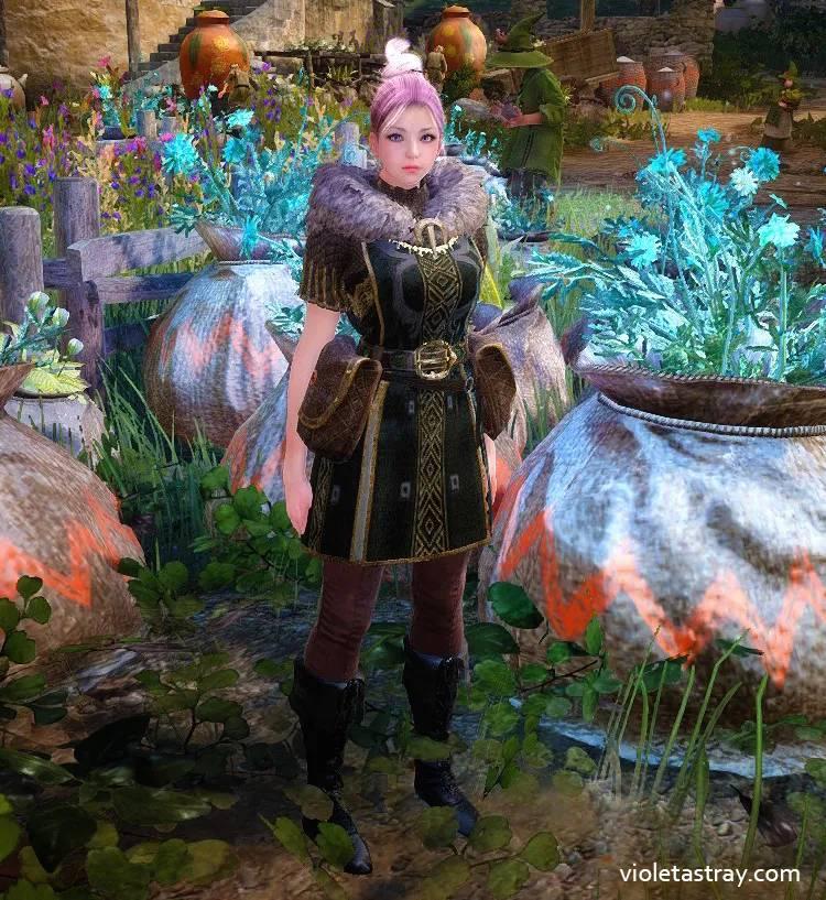 BDO Alchemist's Clothes