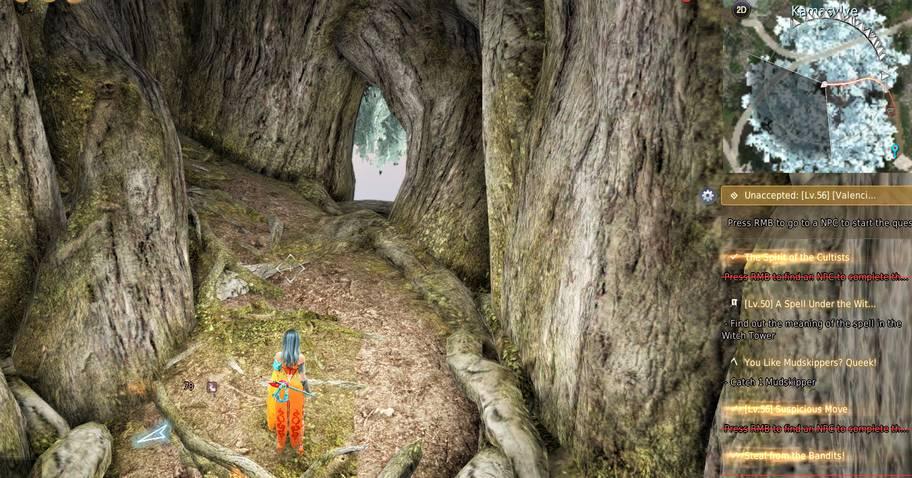 BDO Caphras Memory Location inside Kamasylve Tree