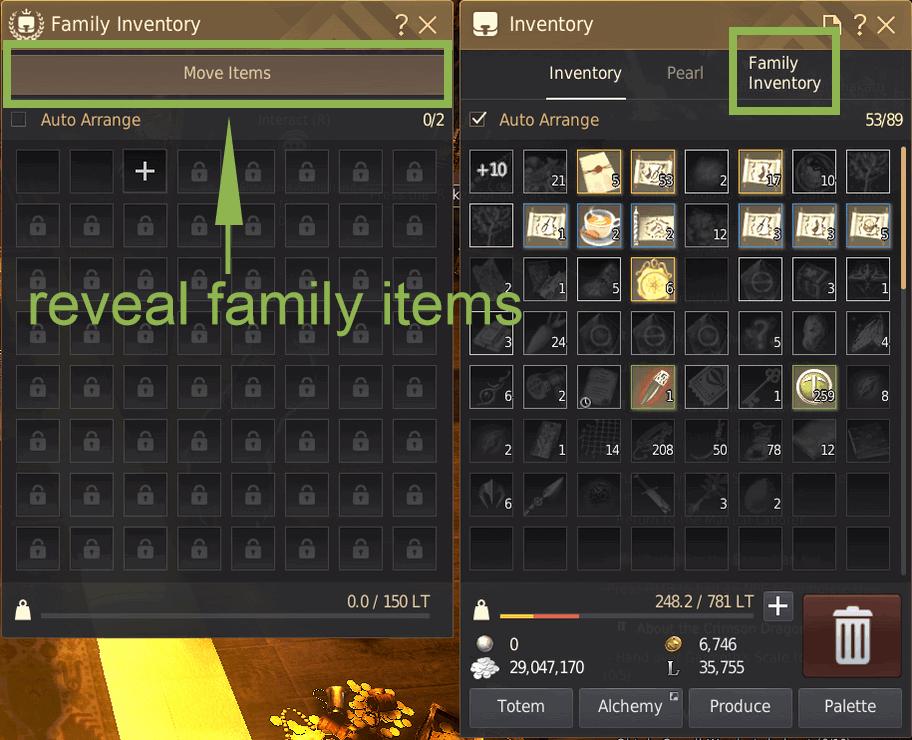 BDO Family Inventory: Move Items