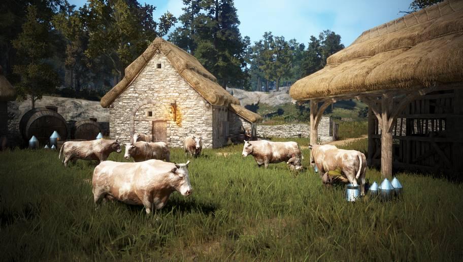 BDO Milk Gathering with Cow Farming & Minigame