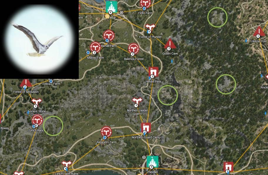 BDO Rare Hawk Map