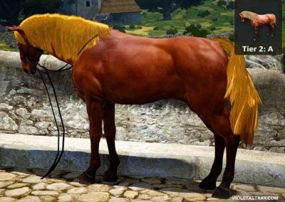 BDO Horse Tier 2-A