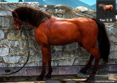 BDO Horse Tier 2-B