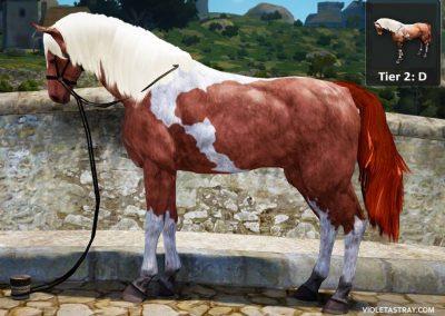 BDO Horse Tier 2-D