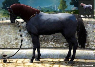 BDO Horse Tier 3-D