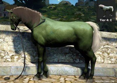 BDO Horse Tier 4-E
