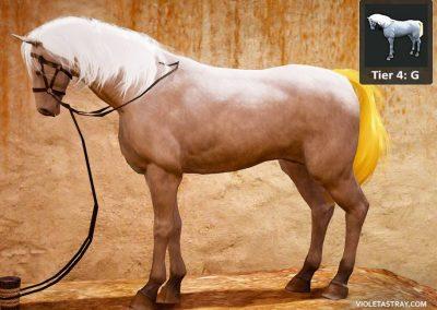 BDO Horse Tier 4-G