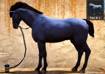 BDO Horse Tier 4-J