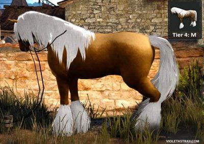 BDO Horse Tier 4-M