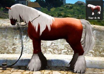 BDO Horse Tier 4-N