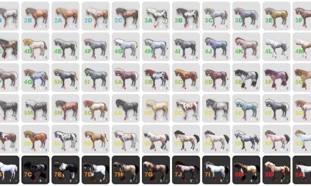 BDO Horse Breeding Advanced: Coats & Color Theory