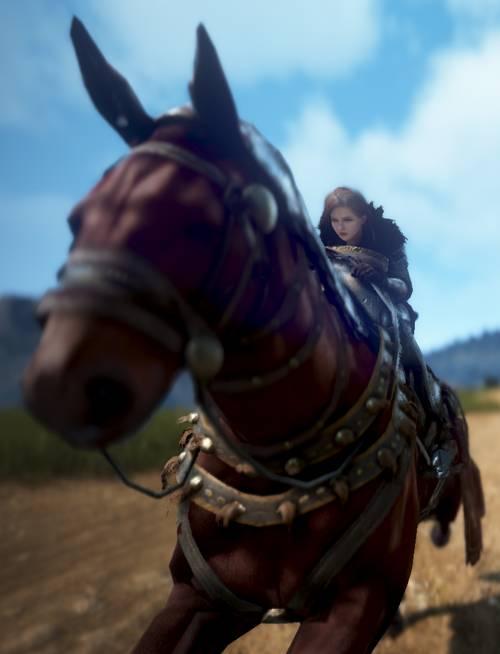 BDO Horse Leveling