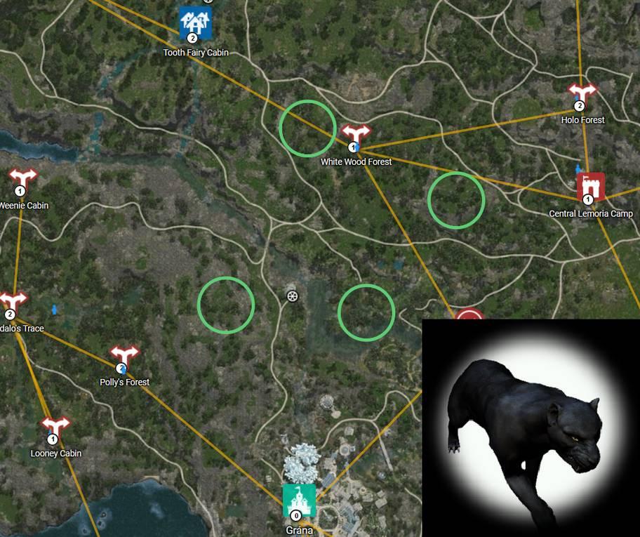 BDO Shadow Leopard Map