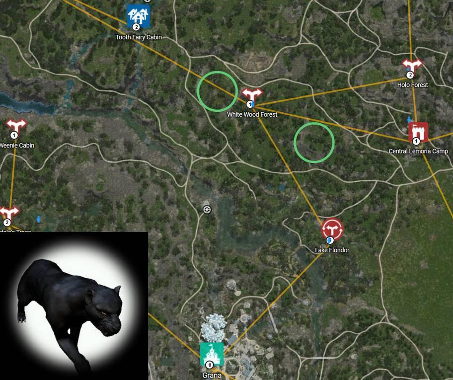BDO Shadow Leopard Rare Hunting Map