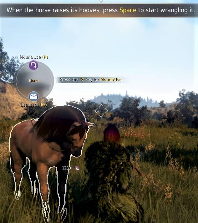 BDO Horse Taming: Sugar Lumps