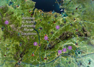 Horse Rotation Map