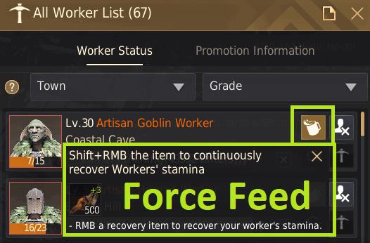 BDO Worker Force Feeding